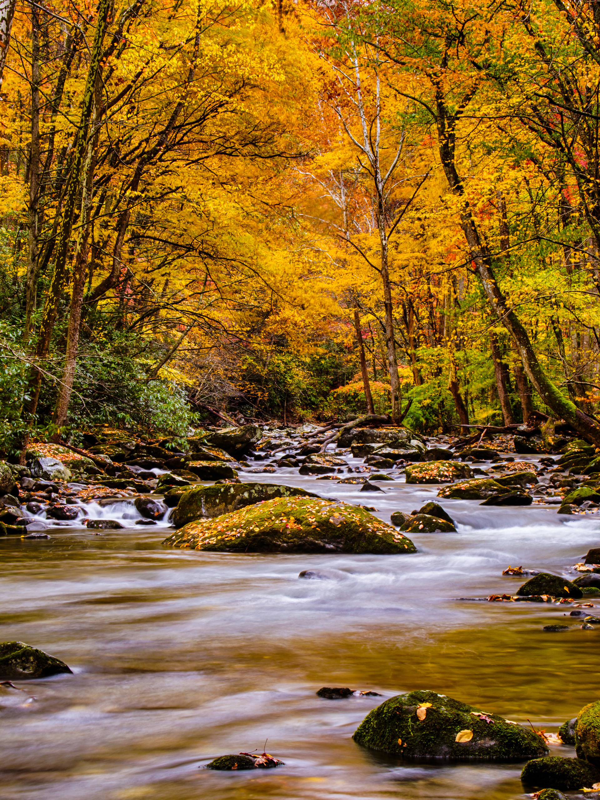 Great Smoky Mountains Fall Iphone Wallpaper Smoky Mountain Winter Scenes Wallpaper 42 Images