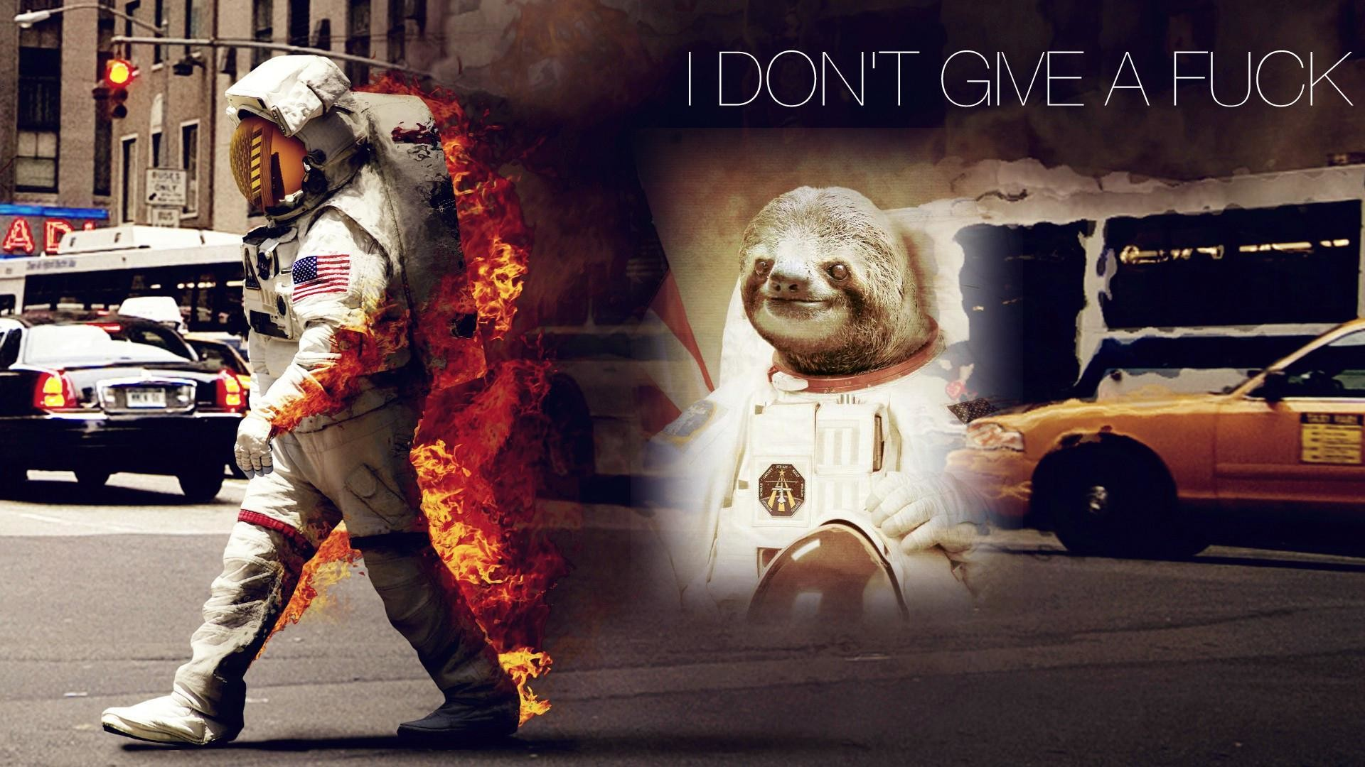 Idgaf Quotes Wallpaper Funny Sloth Wallpapers 73 Images