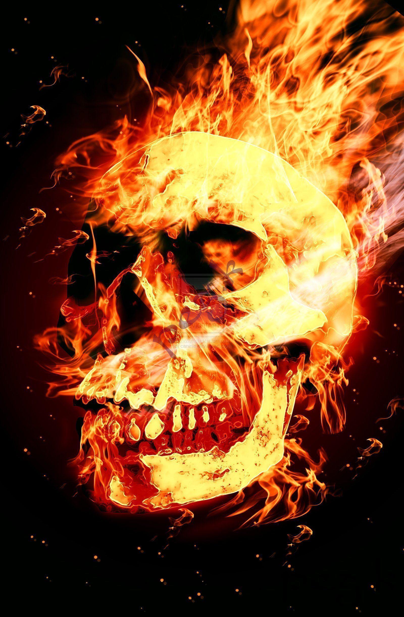 skull fire wallpaper 61