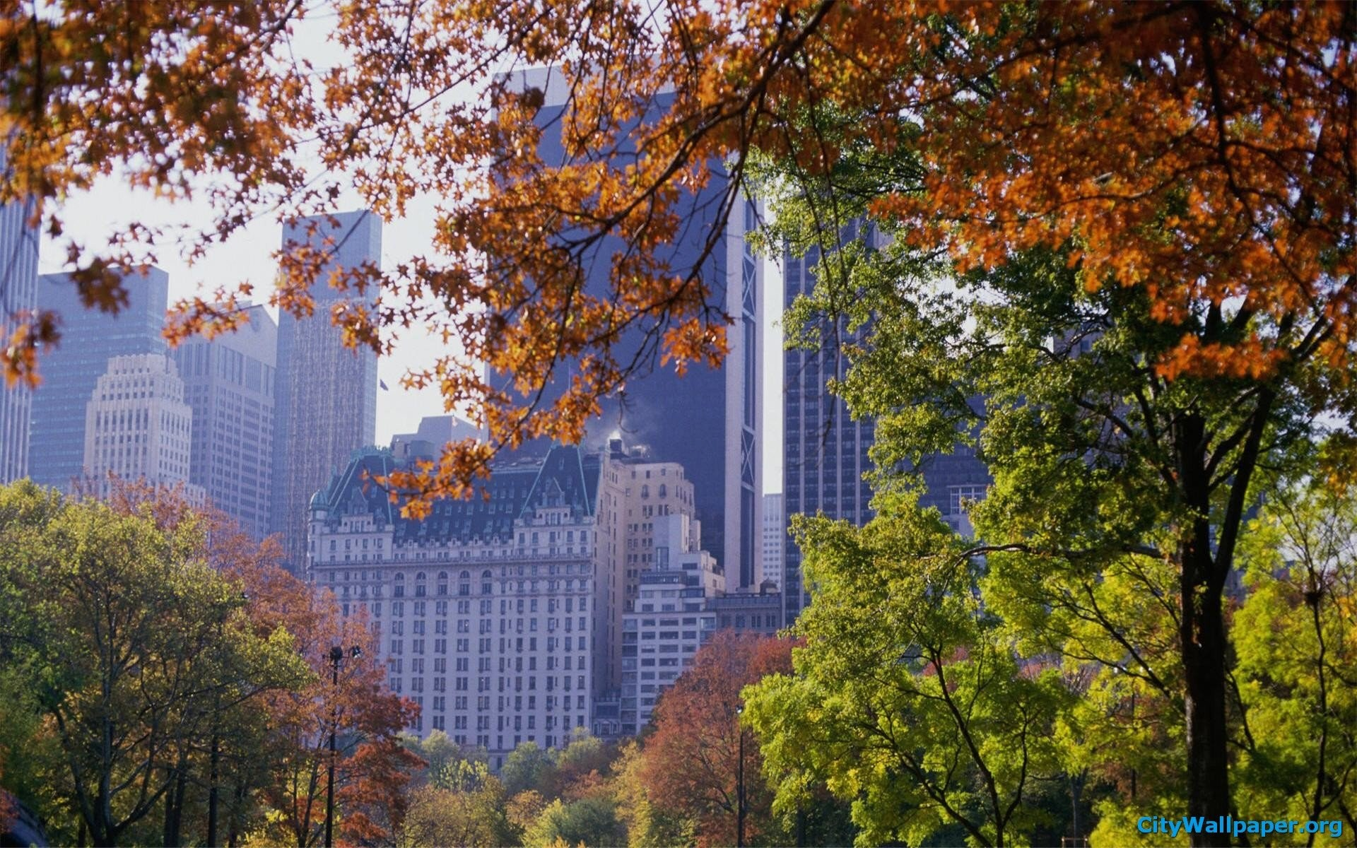 Central Park In Fall Wallpaper Central Park Wallpaper 82 Images