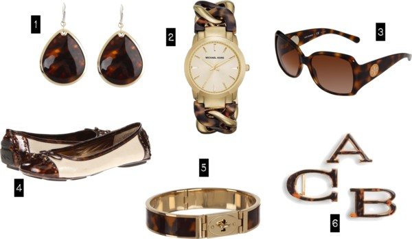 The Next Thing You Need | Tortoise Shell