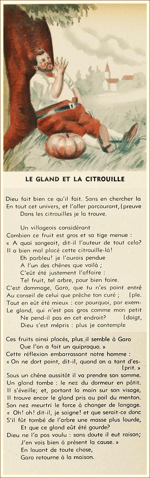 Le Gland Et La Citrouille : gland, citrouille, Gland, Citrouille, Française
