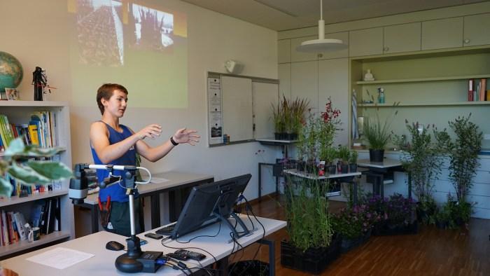 Bei den Gärtner Baumschulisten verwandelte sich das Schulzimmer in ein Gartencenter
