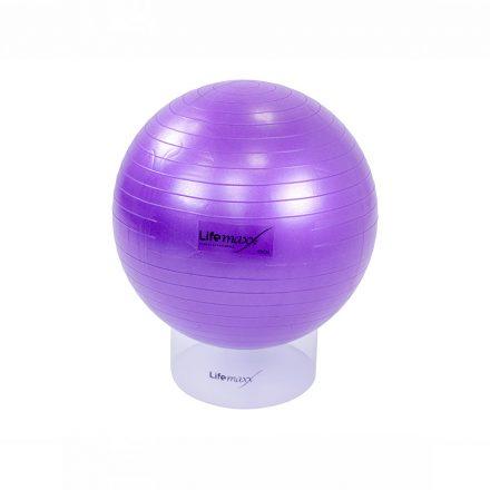 Gym ball 55cm - paars