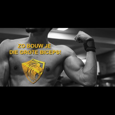 Zo bouw je die grote biceps!