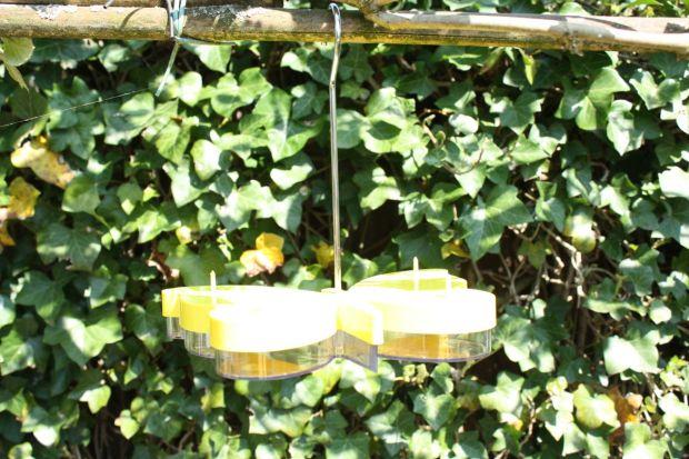 vlindernectar maken (6)