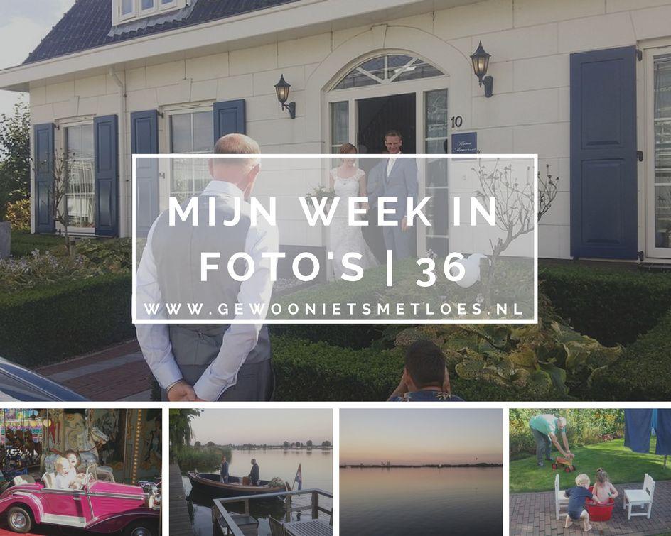 week-36