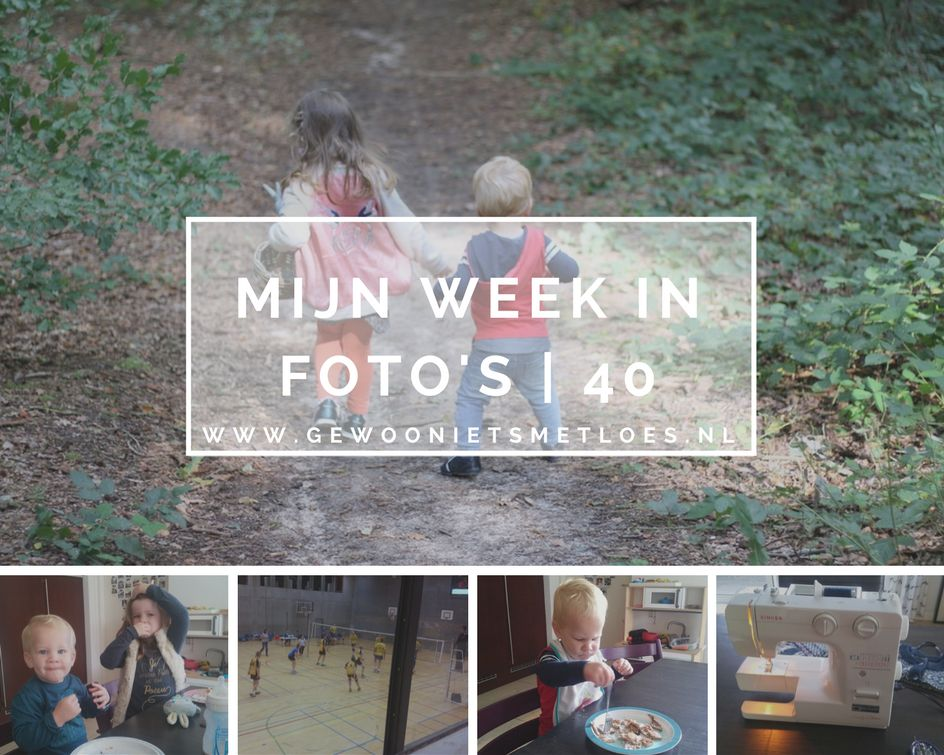 week in foto's 40