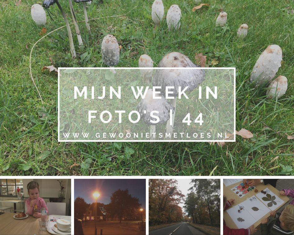 week fotos 44