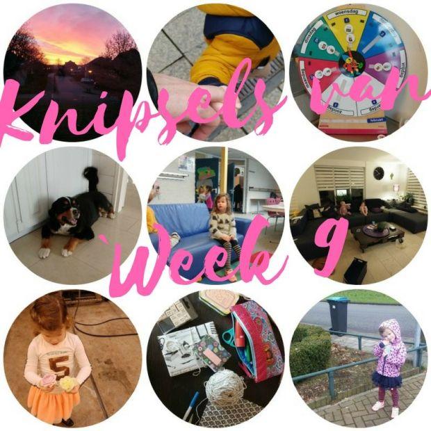 knipsels van week 9