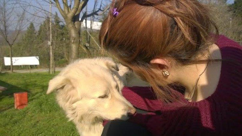 Stella pansiyon beyaz köpeği seven kız.