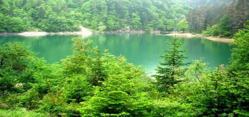 Sülüklü göl yemyeşil