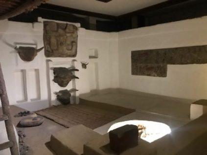 Anadolu Medeniyetleri Muzesi - Catalhoyuk
