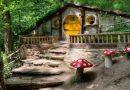 Kocaeli'nin arka bahçesi: Maşukiye'de görülecek yerler