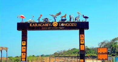 Karacabey longozu