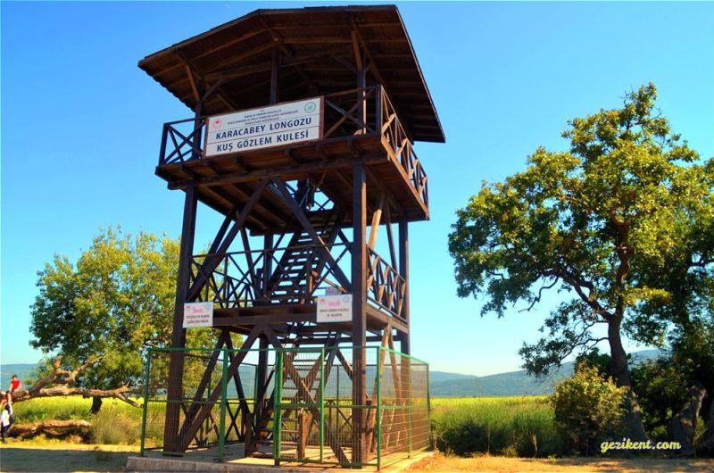 Karacabey longoz ormanları kuş gözlem kulesi