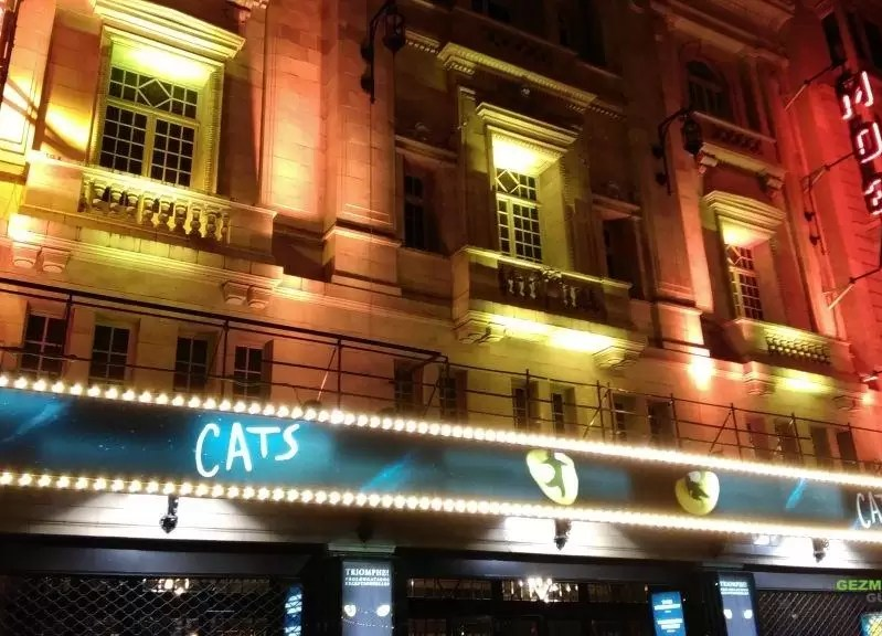 Cats Gösterisi - Pariste Noel