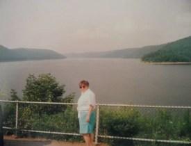 Baraj Gölü, Buffalo