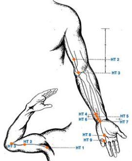 Hartmeridiaan - verbeter je houding - acupunctuur - Gezondheid!