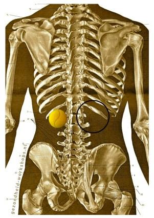 Triggerpoint, rugpijn, masseren met tennisbal, tennisbalmassage, reflexpunt, zelfmassage, gezondheid-workshops, ontspannen, stress relief, stress loslaten, pijn