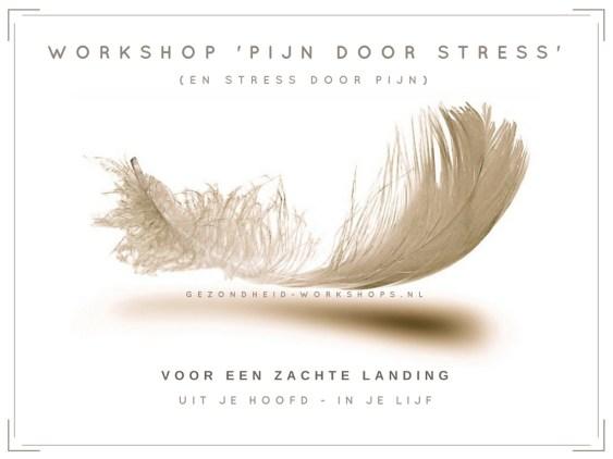 Pijn door Stress, veerkracht, burn-out, vermoeidheidsklachten, stress relieve, ontspannen, gezondheid-workshops, Chi Kung