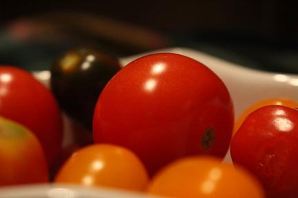 Gourmet Tomatoes