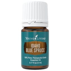 Idaho Blue Spruce Essential Oil - 5 ml