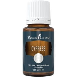 Cypress Essential Oil, 15 ml.