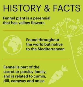 Fennel Facts