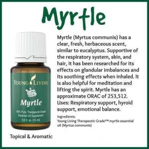 Myrtle attributes