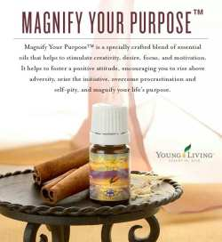 magnify-your-purpose