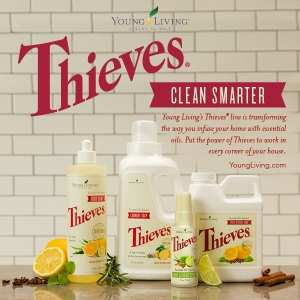 clean-with-thieves
