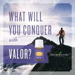 Valor Conquer