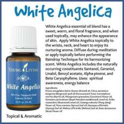 white-angelica-atributes