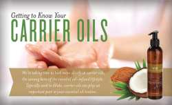 Getting to Know your Carrier Oils V-6 Massage Oil