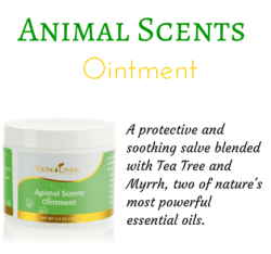 Animal-Scents-ointment