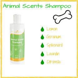 Animal-Shampoo