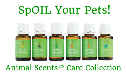 Animal Scents essential oils