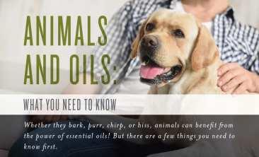 dog-oils