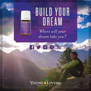 Build Your Dream Oil Blend # 4834