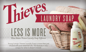 thieves-laundry
