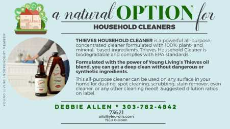 Thieves-Household-Cleaner