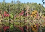 lake-seed-10-19-16