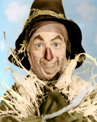 equine marketing; wizard of oz scarecrow