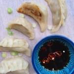 Gyoza Dumplings {gluten free}