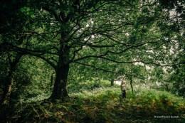 En el bosque.