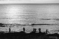 Los mismos que recogían las algas, de noche seguían haciéndolo.