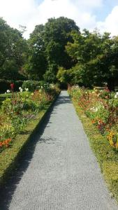 residential garden path