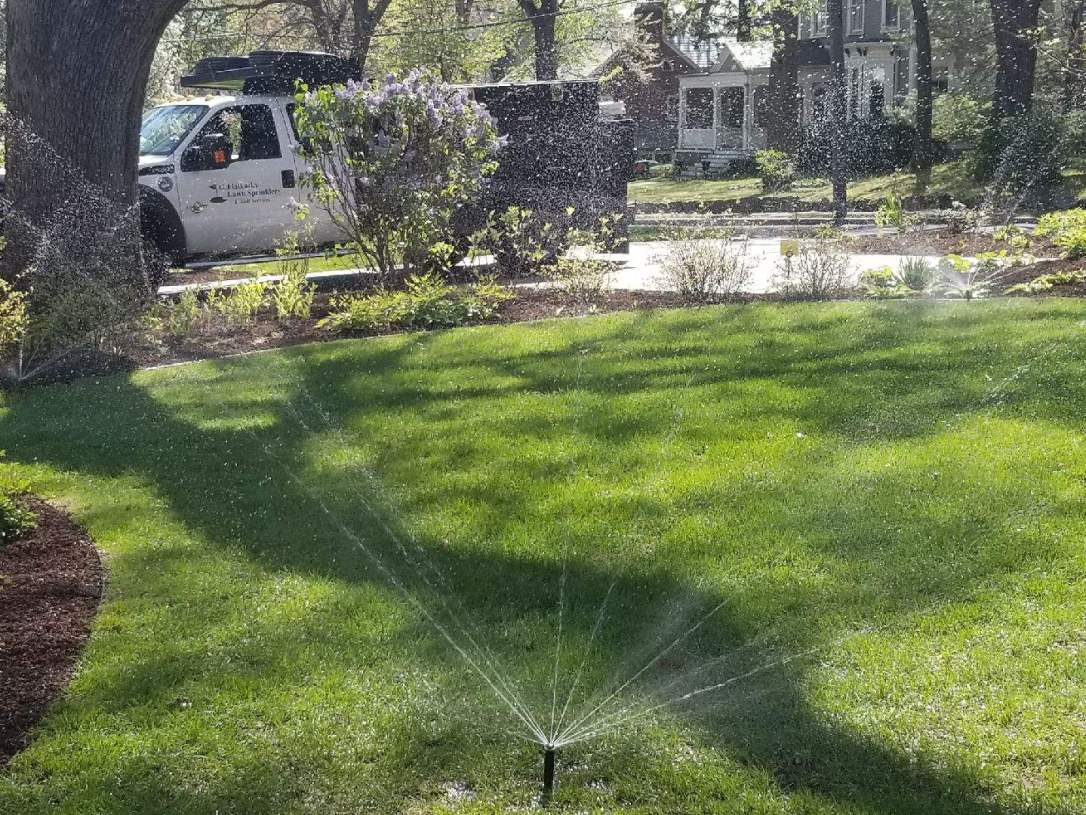 residential front lawn