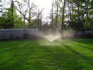 residential backyard sprinkler